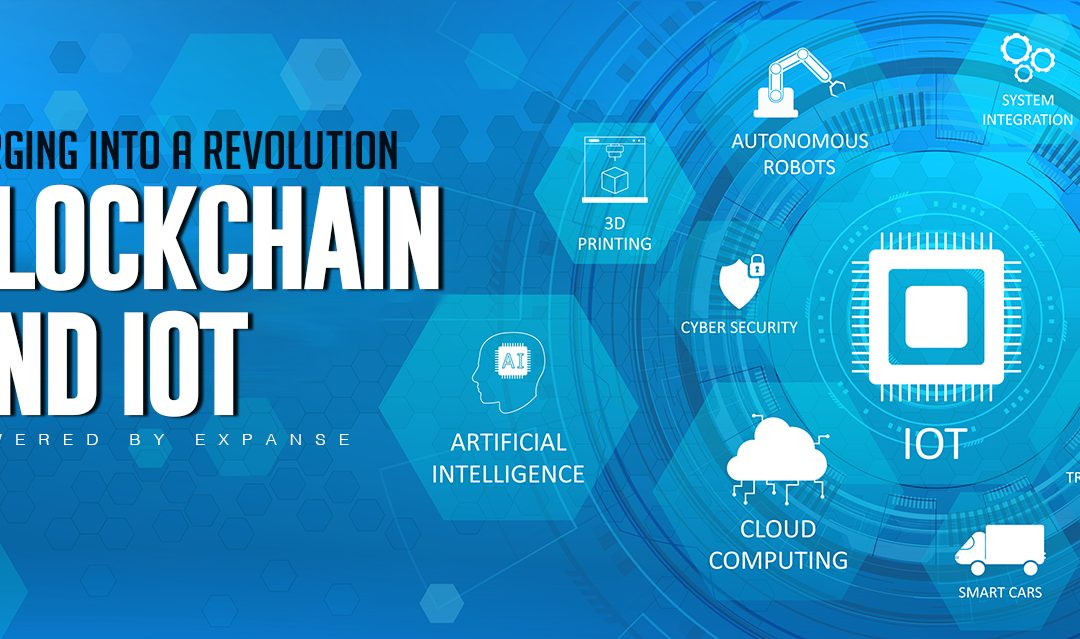 Blockchain and IoT—Two Innovations Merging into a Revolution