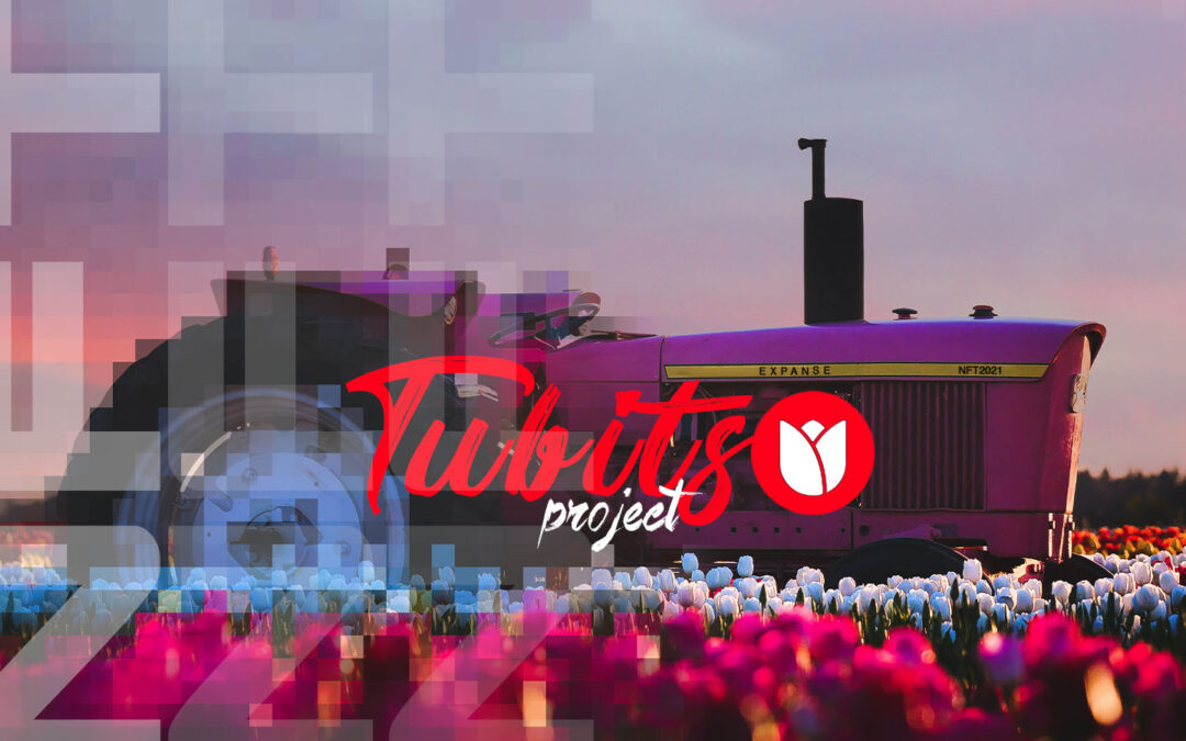 The tubits project